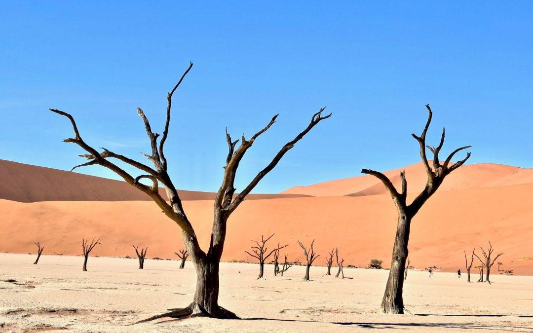 Fez to Marrakech tour, 6 Days via the desert.