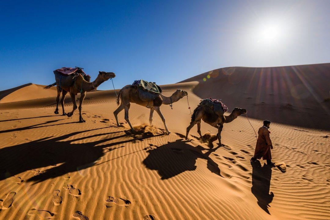 Marrakech sahara tours
