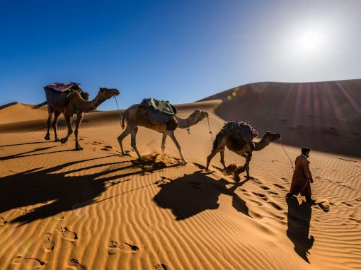 7 days tour from Marrakech via the Sahara desert.