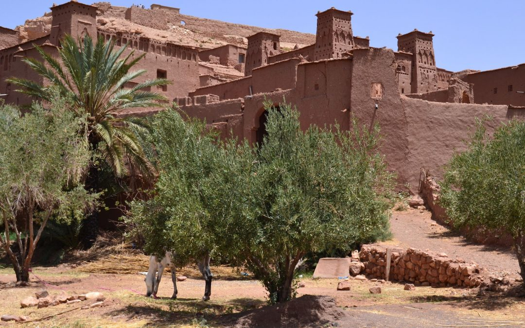 3 Days tour from Fes to Merzouga desert.