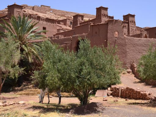 3 Days tour from Fes to Merzouga desert.