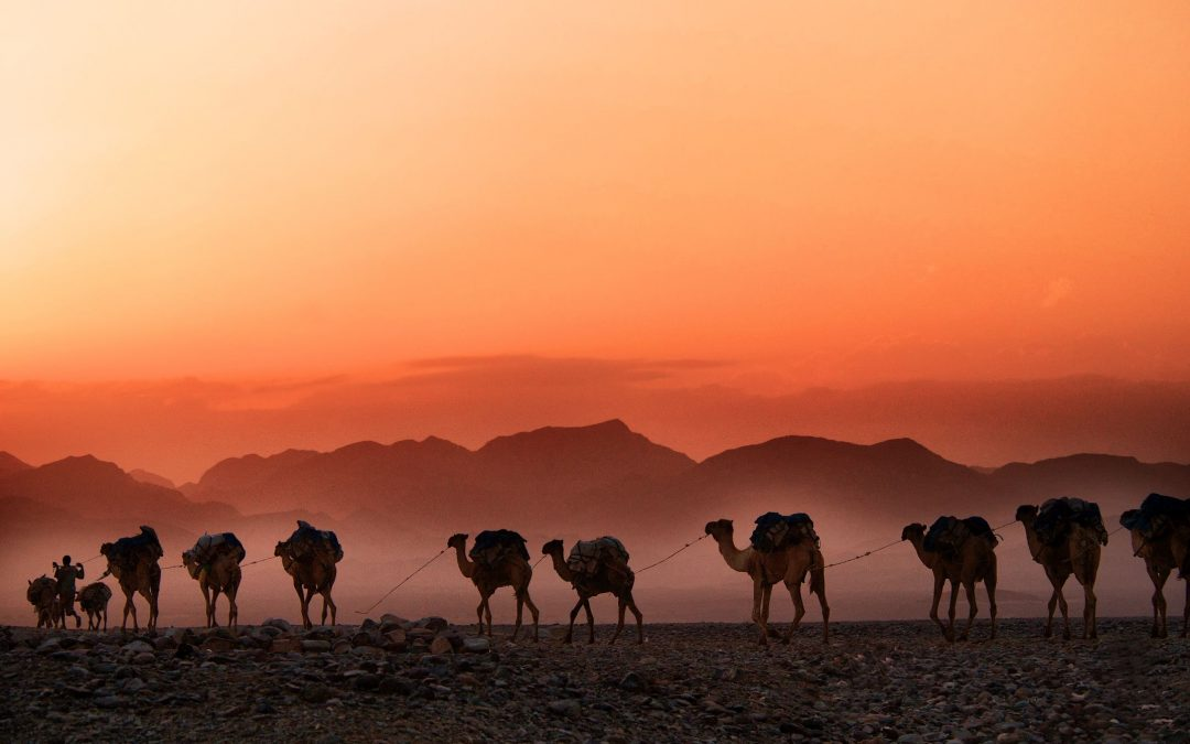 5 days Morocco itinerary: Fes to Marrakech desert trip.