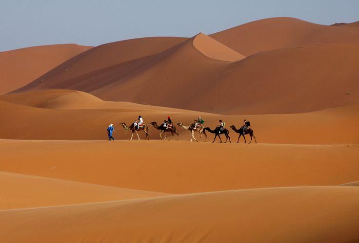 camel ride in Morocco