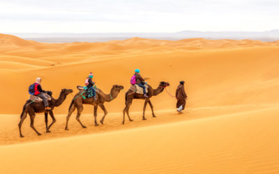 Camel ride Morocco 2020 & 2021