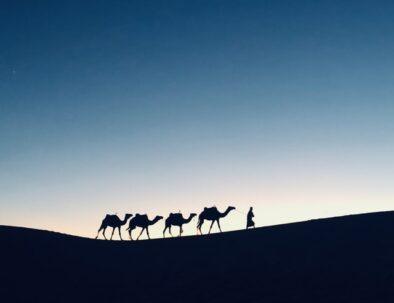 Marrakech desert tours 3 days to Merzouga Sahara with camel trekking