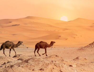 Merzouga, we will discover it with our 6 days itinerary from Tangier