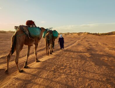 Camel trekking with our tour of 5 days in Morocco