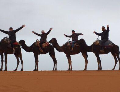 travel agency in Morocco for Morocco tours across the desert